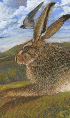 Hare and Swallows